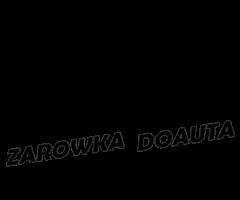 Żarówki i oświetlenie do samochodów – zarowkadoauta.pl